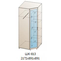 Шкаф для одежды и белья ШК-813