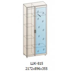 Шкаф для одежды и белья ШК-815