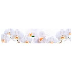 Белая орхидея ASP-15