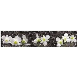 Дикая орхидея ASP-14
