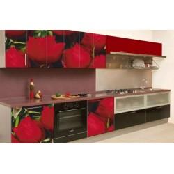 Кухонный гарнитур Оля Экспозиция 6