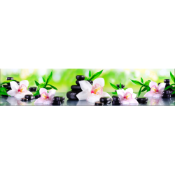 Бамбук и орхидеи AF-45