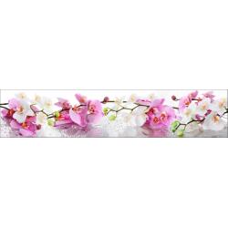 Нежные орхидеи AF-48