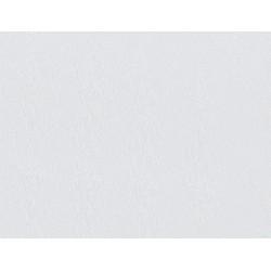 Столешница Бриллиант белый 40 мм 4 категория