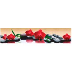 Красные орхидеи ASP-13