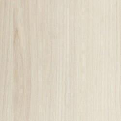 Берёза Белая 116