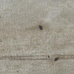 Столешница метрополитан 40 мм 2 категория